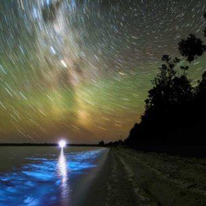"""Piąte miejsce w kategorii """"Beauty of the Night Sky"""" zostało przyznane zdjęciu """"Bioluminescence & Star Trails"""" (Bioluminescencja i smugi gwiazd) autorstwa australijskiego fotografa Phila Harta, który zrobił je 16 stycznia 2013 r. nad jeziorami Gippsland, w australijskim stanie Victoria. Smugi gwiazd nieba południowego są efektem długiej ekspozycji; rozproszony żółto-zielony blask na niebie to światło Drogi Mlecznej; błękit kobaltowy morza jest wynikiem bioluminescencji - światła wytwarzanego przez plankton morski na skutek reakcji chemicznej. Autor: Phil Hart Zdjęcie: Bioluminescence & Star Trails"""